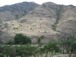 Magden Flock 2003 Specks on a Mountain